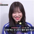 쯔양,조회수,방송,유튜브,수익