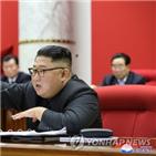 위원장,미국,전략,외교,북한,트럼프,선대,38노스,대통령