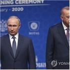 러시아,터키,시리아,대통령,반군,에르도안,공격,비판,휴전,정부군