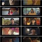 김솔아,홍조,고양이,사람,이재선,방송,순간,고두식