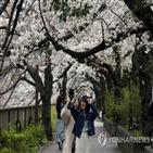 검사,일본,확진,코로나19,최근,지사,마스조