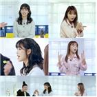 이유리,홍진영,메뉴,공개,배터리