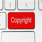 저작권,후보,국회의원,선거,위반,사용,저작물,가치,저작권자