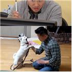 강형욱,장난감,이백,보호자,고민견