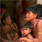 코로나19,원주민,브라질,아마존,열대우림