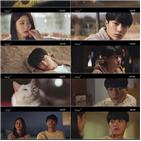 김솔아,홍조,고양이,자신,납치범,김명수