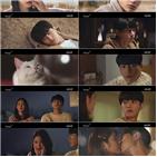 김솔아,홍조,고양이,김명수,자신,납치범