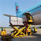 대한항공,화물,항공사,서비스,운송