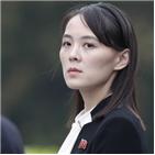 북한,후계자,가능성,김여정,경우