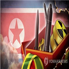 핵무기,미국,한국,국가