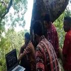 마을,인터넷,접속,회의,촌장,나무