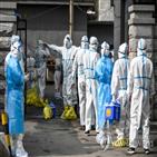 중국,코로나19,확진,신규,감염자