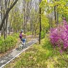 자전거길,공원,자전거,성내천