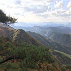 산림청,명품숲,경관
