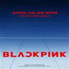 블랙핑크,컴백,걸그룹,세계,메인,신곡