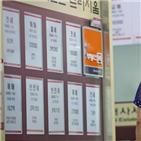 대출,전세,주택,규제,마련,대책,전입,서울,집값,조정대상지