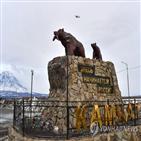 야생곰,먹이,러시아,민가