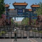 중국,연어,코로나19,바이러스,수입,도마,식품