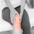 무릎,통증,수술,관절염,관절,방법