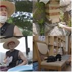 김동완,마을,앤오프,공개,방송,전원생활