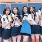 위클리,멤버,데뷔,그린피스,캠페인,비닐봉지