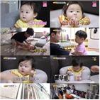 박현빈,아빠,하준,시청률,슈돌