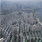 부동산,정부,대책,시장,방안,서울,대한,주택,추가,대폭