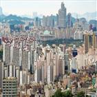 서울,강남,정부,아파트,집값,가격,주택,기준,대책,부동산