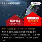 기관,순매수,드림텍,13.5만