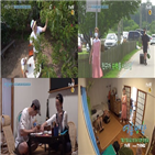 여름방학,최우식,정유미,박서준