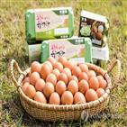 동물복지,식품,매출,계란,증가,동물권,지난해,인증
