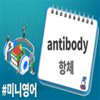 항체,백신,뉴스래빗,코로나19,오디오래빗