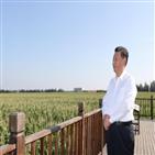 시찰,시진핑,주석,민심,수습