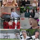 코미디,장르,선사,세계,이태오,김준호,모습,김성원,코너