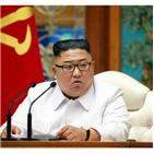 회의,위원장,코로나19,탈북민,개성시,월북,북한,대한,발생