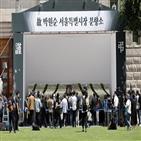 서울,민주당,서울시,통합,지역