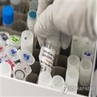 백신,노바백스,코로나19,개발,결과,임상