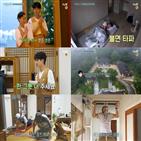 최우식,템플스테이,베이킹,정유미,방송