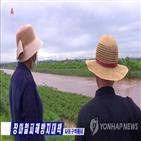 저수지,북한,농경지,폭우,주요,작물,수해복구
