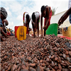 가격,원자재,선물,커피,코코아,설탕