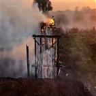 브라질,화재,발생,지난해