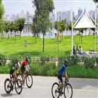 자전거,한강공원,도로,속도,달리,사고,운전자