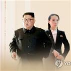 북한,상승,김여정,동반,방산주
