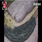 피해,중국,위안,홍수