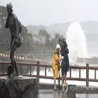 태풍,마이삭,피해,부산,지역,이날,점검,강한,강풍,산사태