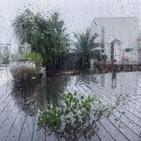 태풍,진재영,사진