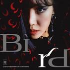 김남주,솔로,버드,데뷔,에이핑크,싱글앨범