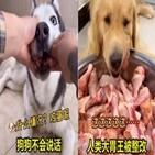 먹방,중국,음식,동영상