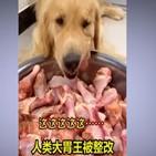 먹방,중국,음식