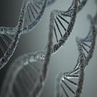 변이,후성유전,유전자,발현,유전체,조절